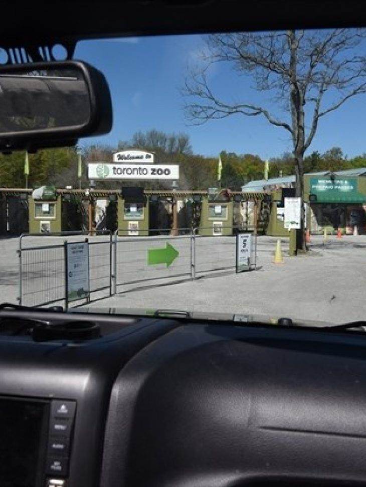 Scenic Safari at Toronto Zoo