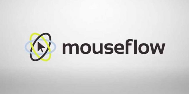Mouseflow website Analytics