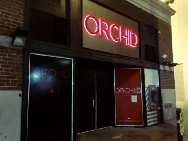 Orchid Nightclub